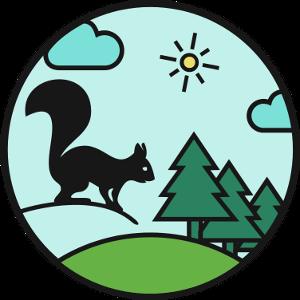 Les écureuils du bois d'Everdes - Atelier de jeux en forêt, en Gruyère